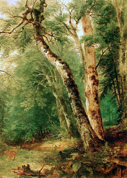 Woodland Interior. The original size is 16.54 x 22.44. It dates c. 1855 and is located in a private collection.