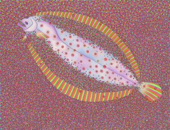 Summer Flounder - Marck Webster