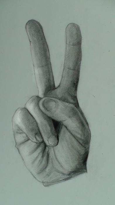 How to Draw the Hand Step by Step- (Peace Sign). <p>  <script type=`text/javascript`><!--  google_ad_client = `pub-6730899040960500`;  /* 728x15, created 2/3/10 */  google_ad_slot = `1049141337`;  google_ad_width = 728;  google_ad_height = 15;  // --></script>  <script src=`http://pagead2.googlesyndication.com/pagead/show_ads.js` type=`text/javascript`></script>  </p>  <p>  <table style=`width: 800px; height: 22px;` border=`0`>  <tbody>  <tr>  <td>  <p><span style=`font-size: small;`><strong>You</strong><span style=`font-size: medium;`>&nbsp;</span>have three resources to work from. 1.) the video 2.) The step by step directions on this page 3.) A printable PDF (Link at bottom) with step by step directions. Take your time! I have noticed that the most successful students look at their reference image more often. Remind yourself to look at the reference image at least once for every five seconds (This is especially important during the shading).</span></p>  </td>  <td valign=`top`>  <p>  <object width=`560` height=`340` data=`http://www.youtube.com/v/MkTq0bAAvnA&amp;hl=en_US&amp;fs=1&amp;` type=`application/x-shockwave-flash`>  <param name=`allowFullScreen` value=`true` />  <param name=`allowscriptaccess` value=`always` />  <param name=`src` value=`http://www.youtube.com/v/MkTq0bAAvnA&amp;hl=en_US&amp;fs=1&amp;` />  <param name=`allowfullscreen` value=`true` />  </object>  </p>  <p><span style=`font-size: small;`>If you get stuck, refer to the video. Leave a comment at the bottom and let me know how you did! If you want to E-Mail me a picture of your work ( kazanjianm@gmail.com ). I will post it on this page! Good Luck! </span><img title=`Cool` src=`http://iown.website/memberarea/tinymce/jscripts/plugins/emotions/img/smiley-cool.gif` border=`0` alt=`Cool` /></p>  </td>  </tr>  </tbody>  </table>  </p>  <p style=`TEXT-ALIGN: left`>&nbsp;&nbsp;&nbsp;&nbsp;&nbsp;&nbsp;&nbsp;&nbsp;<strong>&nbsp;&nbsp;&nbsp;&nbsp;&nbsp;&nbsp;&nbsp;&nbsp;&nbsp;&nbsp;&nbsp;&nbsp;&nbsp;&nbsp;&nbsp;&nbsp;&nbsp;&nbsp;&nbsp;&nbsp;&nbsp;&nbsp;&nbsp;&nbsp;&nbsp;&nbsp;&nbsp;&nbsp;&nbsp;&nbsp;&nbsp;&nbsp;&nbsp;&nbsp;&nbsp;&nbsp;&nbsp;&nbsp;&nbsp;&nbsp;&nbsp;&nbsp;&nbsp;&nbsp;&nbsp;&nbsp;&nbsp;&nbsp;&nbsp;&nbsp;&nbsp;&nbsp;&nbsp;&nbsp;&nbsp;&nbsp;&nbsp;&nbsp;&nbsp;&nbsp;&nbsp;&nbsp;&nbsp;&nbsp;&nbsp;&nbsp;&nbsp;&nbsp;&nbsp;&nbsp; <span style=`font-size: x-large;`>Step by Step</span></strong></p>  <p style=`TEXT-ALIGN: center`>&nbsp;</p>  <table style=`width: 560px; height: 60px;` border=`0` align=`left`>  <tbody>  <tr>  <td>  <p><img title=`Draw the Hand Step By Step Peace Sign 1` src=`http://photos-c.ak.fbcdn.net/hphotos-ak-snc3/hs171.snc3/19878_1266307990679_1619167147_30627339_4484860_n.jpg` alt=`Draw the Hand Step By Step Peace Sign 1` width=`443` height=`339` /></p>  <p><strong>Step 1:</strong> Draw the two fingertip shapes. Notice that the fingertip on the left is at a different angle than the fingertip at the right.</p>  </td>  <td align=`center` valign=`top`>  <p><img title=`Draw the Hand Step By Step Peace Sign 2` src=`http://hphotos-snc3.fbcdn.net/hs191.snc3/19878_1266308030680_1619167147_30627340_8320528_n.jpg` alt=`Draw the Hand Step By Step Peace Sign 2` width=`463` height=`336` /></p>  <p style=`text-align: left;`><strong>Step 2:</strong> Add the next two shapes. Notice that they are slightly longer than the fingertip shapes.</p>  </td>  </tr>  <tr>  <td align=`center` valign=`top`>  <p><img title=`Draw the Hand Step By Step Peace Sign 3` src=`http://photos-h.ak.fbcdn.net/hphotos-ak-snc3/hs191.snc3/19878_1266308070681_1619167147_30627341_5854929_n.jpg` alt=`Draw the Hand Step By Step Peace Sign 3` width=`441` height=`316` /></p>  <p><strong>Step 3:</strong> Draw the trapezoid shape in addition to the two shapes that complete the fingers. Notice that the bottoms of the fingers are slightly longer than the mid sections of the fingers.</p>  </td>  <td align=`center` valign=`top`>  <p><img title=`Draw the Hand Step By Step Peace Sign 4` src=`http://photos-f.ak.fbcdn.net/hphotos-ak-snc3/hs191.snc3/19878_1266308110682_1619167147_30627342_2444552_n.jpg` alt=`Draw the Hand Step By Step Peace Sign 4` width=`453` height=`319` /></p>  <p style=`text-align: left;`><strong>Step 4: </strong>Step four is the trickiest step. Give it some extra observation time. Notice that the thumb overlaps the trapezoid shape. Also, notice that the thumb in this position, resembles a flying saucer tilting to the side.....TES....a flying saucer with a thumbnail in it.</p>  </td>  </tr>  <tr>  <td>  <p>&nbsp;<img title=`Draw the Hand Step By Step Peace Sign 5` src=`http://hphotos-snc3.fbcdn.net/hs191.snc3/19878_1266308150683_1619167147_30627343_1967351_n.jpg` alt=`Draw the Hand Step By Step Peace Sign 5` width=`441` height=`301` /></p>  <p><strong>Step 5:</strong> Draw the traingle shape. Notice that it is directly below the V shape from the two fingers. Also notice the tiny shape that I made tp the right side of the thumb.</p>  </td>  <td align=`center` valign=`top`>  <p>&nbsp;<img title=`Draw the Hand Step By Step Peace Sign 6` src=`http://hphotos-snc3.fbcdn.net/hs171.snc3/19878_1266308190684_1619167147_30627344_2656934_n.jpg` alt=`Draw the Hand Step By Step Peace Sign 6` width=`449` height=`309` /></p>  <p style=`text-align: left;`><strong>Step 6:</strong> Draw the tilted U shape, to the left of the triangle. Also, draw in the fingernail.</p>  </td>  </tr>  </tbody>  </table>  <p>&nbsp;</p>  <p>&nbsp;</p>  <p>&nbsp;</p>  <p>&nbsp;</p>  <p>&nbsp;</p>  <p>&nbsp;</p>  <p>&nbsp;</p>  <p>&nbsp;</p>  <p>&nbsp;</p>  <p>&nbsp;</p>  <p>&nbsp;</p>  <p>&nbsp;</p>  <p>&nbsp;</p>  <p>&nbsp;</p>  <p>&nbsp;</p>  <p>&nbsp;</p>  <p>&nbsp;</p>  <p>&nbsp;</p>  <p>&nbsp;</p>  <p>&nbsp;</p>  <p>&nbsp;</p>  <p>&nbsp;</p>  <p>&nbsp;</p>  <p>&nbsp;</p>  <p>&nbsp;</p>  <p>&nbsp;</p>  <p>&nbsp;</p>  <p>&nbsp;</p>  <p>&nbsp;</p>  <p>&nbsp;</p>  <p>&nbsp;</p>  <p>&nbsp;</p>  <p>&nbsp;</p>  <p>&nbsp;</p>  <p>&nbsp;</p>  <p>&nbsp;</p>  <p>&nbsp;</p>  <p>&nbsp;</p>  <p>&nbsp;</p>  <form action=`http://www.tkqlhce.com/interactive` enctype=`application/x-www-form-urlencoded` method=`get`>  <table style=`width: 867px; height: 292px;` border=`0` cellspacing=`0` cellpadding=`5`>  <tbody>  <tr>  <td width=`10%` valign=`top`><img src=`http://store.corel.com/wcsstore/CorelMasterCatalog//upload/boxshots/Painter_11_beautybox_right_128.jpg` border=`0` alt=`Corel Painter 11` /></td>  <td valign=`top`>  <p><strong><span style=`font-size: medium;`>Corel Painter 11</span></strong></p>  <p><span style=`font-size: x-small;`>Buy Painter 11 and receive a Free copy of Digital Painting Fundamentals. Offer Ends Midnight 02/28/10. Available by instant download or box - Corel&reg; Painter 11 is the ultimate art studio for anyone ready to expand their definition of creativity. Go beyond natural media and create the designs you?ve always envisioned. Painter`s RealBristle Painting System makes brushes totally responsive to your hand movements and canvas texture. Wacom&reg; support for pen and drawing tablets lets you create digital art in a traditional way. Adobe&reg; Photoshop&reg; support maintains colors and layers when transferring files between Photoshop and Painter. Photo-painting tools let you transform photos into paintings by hand or automatically with the Auto-Painting feature. Includes a 100-page Getting Started Guide (Box version only) and a digital user manual</span></p>  <hr />  <input name=`trkid` type=`hidden` value=`CJ` /> <input name=`pid` type=`hidden` value=`3724826` /> <input name=`aid` type=`hidden` value=`10274094` /> <input name=`cjsku` type=`hidden` value=`PTR11ENPCM` /> <input name=`url` type=`hidden` value=`http://apps.corel.com/store/productpage.asp?partnumber=OL_PF11EN&amp;store=US&amp;trkid=CJ` /> <input type=`submit` value=`Buy` /></td>  </tr>  </tbody>  </table>  </form>  <p><img src=`http://www.tqlkg.com/image-3724826-10274094` border=`0` alt=`` width=`1` height=`1` /></p>  <p>&nbsp;</p>  <p>  <table style=`width: 705px; height: 76px;` border=`0`>  <tbody>  <tr>  <td>  <p><img title=`Draw the Hand Step By Step Peace Sign 7` src=`http://hphotos-snc3.fbcdn.net/hs171.snc3/19878_1266308230685_1619167147_30627345_2092817_n.jpg` alt=`Draw the Hand Step By Step Peace Sign 7` width=`401` height=`313` /></p>  <p>Step 7: Observe the picture to close the U shape from step 6.</p>  </td>  <td align=`center` valign=`top`>  <p><img title=`Draw the Hand Step By Step Peace Sign 8` src=`http://photos-e.ak.fbcdn.net/hphotos-ak-snc3/hs171.snc3/19878_1266308270686_1619167147_30627346_6487033_n.jpg` alt=`Draw the Hand Step By Step Peace Sign 8` width=`437` height=`316` /></p>  <p style=`text-align: left;`>Step 8: Add in the shape that I just added. It will eventually be a part of the pinky finger.&nbsp;</p>  </td>  </tr>  <tr>  <td>  <p>&nbsp;<img title=`Draw the Hand Step By Step Peace Sign 9` src=`http://hphotos-snc3.fbcdn.net/hs171.snc3/19878_1266308310687_1619167147_30627347_3441263_n.jpg` alt=`Draw the Hand Step By Step Peace Sign 9` width=`400` height=`300` /></p>  <p>Step 9: Add in the fingertip and fingernail to complete the shape for the pinky finger.</p>  </td>  <td align=`center` valign=`top`>  <p>&nbsp;<img title=`Draw the Hand Step By Step Peace Sign 10` src=`http://photos-d.ak.fbcdn.net/hphotos-ak-snc3/hs191.snc3/19878_1266308350688_1619167147_30627348_3277585_n.jpg` alt=`Draw the Hand Step By Step Peace Sign 10` width=`419` height=`311` /></p>  <p>Step 10: Add the triangle shape next to the pinky finger. This will eventually be part of the palm.</p>  </td>  </tr>  <tr>  <td>  <p>&nbsp;<img title=`Draw the Hand Step By Step Peace Sign 11` src=`http://hphotos-snc3.fbcdn.net/hs191.snc3/19878_1266308390689_1619167147_30627349_3984929_n.jpg` alt=`Draw the Hand Step By Step Peace Sign 11` width=`396` height=`304` /></p>  <p>Step 11: Add in the shape for the lower palm.</p>  </td>  <td align=`center` valign=`top`>  <p>&nbsp;<img title=`Draw the Hand Step By Step Peace Sign 12` src=`http://hphotos-snc3.fbcdn.net/hs171.snc3/19878_1266308430690_1619167147_30627350_4032614_n.jpg` alt=`Draw the Hand Step By Step Peace Sign 12` width=`421` height=`301` /></p>  <p>Step 12: Observe the line that was just added. It is similar to the bottom of a cup. It starts at the middle of the ring finger and ends at the thumb shape from Step 4.</p>  </td>  </tr>  <tr>  <td>  <p>&nbsp;<img title=`Draw the Hand Step By Step Peace Sign 13` src=`http://hphotos-snc3.fbcdn.net/hs171.snc3/19878_1266308470691_1619167147_30627351_2642641_n.jpg` alt=`Draw the Hand Step By Step Peace Sign 13` width=`406` height=`321` /></p>  <p>Step 13: Take some extra time to observe the line that I just added. Then, complete the shape for the bottom of the palm.</p>  </td>  <td align=`center` valign=`middle`>&nbsp;   <object width=`336` height=`324` data=`http://www.paintyourlife.com/banners/250x250-family.swf` type=`application/x-shockwave-flash`>  <param name=`id` value=`pyl-250x250` />  <param name=`align` value=`middle` />  <param name=`allowScriptAccess` value=`always` />  <param name=`quality` value=`high` />  <param name=`bgcolor` value=`#ffffff` />  <param name=`src` value=`http://www.paintyourlife.com/banners/250x250-family.swf` />  <param name=`name` value=`pyl-250x250` />  </object>  &nbsp;</td>  </tr>  </tbody>  </table>  </p>  <p>&nbsp;</p>  <p>&nbsp;</p>  <form action=`http://www.tkqlhce.com/interactive` enctype=`application/x-www-form-urlencoded` method=`get`>  <table style=`width: 600px;` border=`0` cellspacing=`0` cellpadding=`5`>  <tbody>  <tr>  <td width=`10%` valign=`top`><img src=`http://img.roxio.com/enu/images/boxshot/120x160/120x160_c2009.jpg` border=`0` alt=`Creator 2010 -Download` /></td>  <td valign=`top`>  <p><strong><span style=`font-size: medium;`>Creator 2010 -Download</span></strong></p>  <p><span style=`font-size: x-small;`>Roxio Creator 2010 is the program that I use to put my videos together. I ONLY ENDORSE products that I USE and LOVE! -Merrill</span></p>  <hr />  <input name=`pid` type=`hidden` value=`3724826` /> <input name=`aid` type=`hidden` value=`10373745` /> <input name=`cjsku` type=`hidden` value=`152426800` /> <input name=`url` type=`hidden` value=`http://www.roxio.com/enu/products/creator/suite/overview.html?rtrack=hpban13` /> <input type=`submit` value=`Buy` /></td>  </tr>  </tbody>  </table>  </form>  <p><img src=`http://www.ftjcfx.com/image-3724826-10373745` border=`0` alt=`` width=`1` height=`1` /></p>  <p>&nbsp;</p>  <p><span style=`font-size: x-large;`>SHADING</span></p>  <p><img title=`Draw the Hand Step By Step Peace Sign 14` src=`http://hphotos-snc3.fbcdn.net/hs171.snc3/19878_1266387112657_1619167147_30627435_4278406_n.jpg` alt=`Draw the Hand Step By Step Peace Sign 14` width=`604` height=`340` /></p>  <p>Step 14: Now, take a second to observe the lines that I ALMOST totally erased.</p>  <p><img title=`Draw the Hand Step By Step Peace Sign 15` src=`http://photos-g.ak.fbcdn.net/hphotos-ak-snc3/hs171.snc3/19878_1266387152658_1619167147_30627436_7946824_n.jpg` alt=`Draw the Hand Step By Step Peace Sign 15` width=`604` height=`340` /></p>  <p>Step 15: Build the tones up slowly. Start cross hatching with an HB (#2) pencil.</p>  <p><img title=`Draw the Hand Step By Step Peace Sign 16` src=`http://hphotos-snc3.fbcdn.net/hs171.snc3/19878_1266387192659_1619167147_30627437_635668_n.jpg` alt=`Draw the Hand Step By Step Peace Sign 16` width=`604` height=`340` /></p>  <p>Step 16: (NOT SHOWN) I use a blending stump to smudge my hatches. And then I do more hatching atop of the smudges.</p>  <p><img title=`Draw the Hand Step By Step Peace Sign 17` src=`http://photos-b.ak.fbcdn.net/hphotos-ak-snc3/hs191.snc3/19878_1266387232660_1619167147_30627438_3602964_n.jpg` alt=`Draw the Hand Step By Step Peace Sign 17` width=`604` height=`340` /></p>  <p>Step 17: The darkest parts will be the triangle in the center and the areas on the edges of the right side of the hand (and fingers....see this developed in the next few steps).</p>  <p><img title=`Draw the Hand Step By Step Peace Sign 18` src=`http://hphotos-snc3.fbcdn.net/hs191.snc3/19878_1266387272661_1619167147_30627439_1096411_n.jpg` alt=`Draw the Hand Step By Step Peace Sign 18` width=`604` height=`340` /></p>  <p>Step 18: At this point I am using my darker (in tone) 2B, 3B, 4B and 5B pencils. I also use the eraser (A LOT) to create highlights.</p>  <p><img title=`Draw the Hand Step By Step Peace Sign 19` src=`http://photos-e.ak.fbcdn.net/hphotos-ak-snc3/hs171.snc3/19878_1266387312662_1619167147_30627440_8233752_n.jpg` alt=`Draw the Hand Step By Step Peace Sign 19` width=`604` height=`340` /></p>  <p>Step 19: I always try to finish a drawing by smoothing it out by using the pencil, the eraser and the blending stub (tortillion).</p>  <p><img title=`Draw the Hand Step By Step Peace Sign 20` src=`http://hphotos-snc3.fbcdn.net/hs171.snc3/19878_1266388312687_1619167147_30627443_3081390_n.jpg` alt=`Draw the Hand Step By Step Peace Sign 20` width=`339` height=`604` /></p>  <p>Step 20: Finished!</p>  <form action=`http://www.anrdoezrs.net/interactive` enctype=`application/x-www-form-urlencoded` method=`get`>  <table style=`width: 600px;` border=`0` cellspacing=`0` cellpadding=`5`>  <tbody>  <tr>  <td width=`10%` valign=`top`><img src=`http://www.dick-blick.com/items/222/20/22220-group2ww-m.jpg` border=`0` alt=`Set of 12` /></td>  <td valign=`top`>  <p><strong><span style=`font-size: medium;`>Set of 12 Drawing Pencils<br /></span></strong></p>  <p>Merrillk.com supporters,</p>  <p><span style=`font-size: x-small;`>I am an affiliate of Blick, but I ONLY ENDORSE products that I BELIEVE IN and USE for myself! This is a great deal!&nbsp; I havent found a more competitive price on the internet for a complete set of drawing pencils. The set contains 12 pencils, one each of 6B, 5B, 4B, 3B, 2B, B, HB, F, H, 2H, 4H, and 6H. The price is LESS THAN TEN DOLLARS!</span></p>  <p><span style=`font-size: x-small;`>Sincerely,</span></p>  <p><span style=`font-size: x-small;`>Merrill Kazanjian<br /></span></p>  <hr />  <input name=`pid` type=`hidden` value=`3724826` /> <input name=`aid` type=`hidden` value=`10495307` /> <input name=`cjsku` type=`hidden` value=`22220-2009` /> <input name=`url` type=`hidden` value=`http://www.dickblick.com/products/blick-studio-drawing-pencils/?wmcp=cj&amp;wmcid=feeds&amp;wmckw=22220-2009-11854` /> <input type=`submit` value=`Buy` /></td>  </tr>  </tbody>  </table>  </form>  <p><img src=`http://www.lduhtrp.net/image-3724826-10495307` border=`0` alt=`` width=`1` height=`1` /></p>  <p>&nbsp;</p>  <p><a href=`http://iown.website/bx/_files/113images/articles_img_files/peace_sign_finished.pdf`><span style=`font-size: xx-large;`>DOWNLOAD THE PDF: CLICK HERE</span></a></p>  <p>Notice: I am the holder of the copyright on this material. I grant permission for visitors to Merrillk.com to print this resource and utilize it for their own benefit, or for the benefit of students in a pedagogical setting. But, the contents of this resource may not be resold for profit in any capacity.</p>  <p><a href=`http://www.dpbolvw.net/click-3724826-10460640` target=`_top`><img src=`http://www.ftjcfx.com/image-3724826-10460640` border=`0` alt=`www.DickBlick.com - Online Art Supplies` width=`200` height=`150` /></a></p>  <p>My Relationship with Dickblick Art Materials goes back to when I was a rookie teacher in 2001. Art teachers have limited budgets and we are forced to &ldquo;shop around&rdquo; to find the best deals. In almost every case, Blick has the best prices and their customer service is AMAZING! They made me a loyal customer over the course of my entire teaching career. Now that I am a full time artist, I have chosen to become an affiliate of Blick, I only endorse companies that I believe in, and products that I USE (See my videos). Right now Blick is offering:<a href=`http://www.anrdoezrs.net/click-3724826-10513159` target=`_top`> FREE SHIPPING on orders totaling $200 or more</a><img src=`http://www.ftjcfx.com/image-3724826-10513159` border=`0` alt=`` width=`1` height=`1` />and the best &ldquo;ON SALE&rdquo; deals for art supplies on the internet. <a href=`http://www.anrdoezrs.net/click-3724826-10512967` target=`_top`>Hot Deals of the Week!</a><img src=`http://www.ftjcfx.com/image-3724826-10512967` border=`0` alt=`` width=`1` height=`1` /></p>
