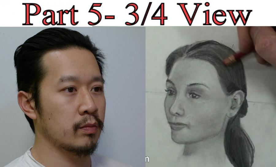 Proportions of the Human Head/Face For Portrait Drawing. <table border=`0`>  <tbody>  <tr>  <td>&nbsp;   <object width=`640` height=`385` data=`http://www.youtube.com/v/73N65A_PsOM?fs=1&amp;hl=en_US` type=`application/x-shockwave-flash`>  <param name=`allowFullScreen` value=`true` />  <param name=`allowscriptaccess` value=`always` />  <param name=`src` value=`http://www.youtube.com/v/73N65A_PsOM?fs=1&amp;hl=en_US` />  <param name=`allowfullscreen` value=`true` />  </object>  </td>  </tr>  </tbody>  </table>  <p>  <script type=`text/javascript`><!--  google_ad_client = `pub-6730899040960500`;  /* Across top */  google_ad_slot = `1049141337`;  google_ad_width = 728;  google_ad_height = 15;  // --></script>  <script src=`http://pagead2.googlesyndication.com/pagead/show_ads.js` type=`text/javascript`></script>  </p>  <p><span style=`font-size: small;`>&nbsp;<strong>Above:</strong> A tutorial about how to draw the human head in the 3/4 pose </span></p>  <p><span style=`font-size: small;`>(Between front and profile view)</span></p>  <p><span style=`font-size: small;`><strong>Below:</strong> The art supplies that I used to make the drawing.</span></p>  <form action=`http://www.jdoqocy.com/interactive` enctype=`application/x-www-form-urlencoded` method=`get`>  <table style=`width: 600px;` border=`0` cellspacing=`0` cellpadding=`5`>  <tbody>  <tr>  <td width=`10%` valign=`top`>`&gt;<img src=`http://www.dick-blick.com/items/222/06/22206-0159-2ww-m.jpg` border=`0` alt=`15-Piece Drawing Set` /></td>  <td valign=`top`>  <p><strong><span style=`font-size: medium;`>15-Piece Drawing Set</span></strong></p>  <p><span style=`font-size: x-small;`><strong>Merrill`s Opinion:</strong> Faber-Castell makes the&nbsp;best drawing pencils. These pencils&nbsp;are mixed with graphite and clay and&nbsp;enhance an artists ability to create and layer dark tones.&nbsp;You will see me use this set in almost all of my videos.&nbsp; </span></p>  <hr />  <input name=`pid` type=`hidden` value=`3724826` /> <input name=`aid` type=`hidden` value=`10495307` /> <input name=`cjsku` type=`hidden` value=`22206-0159` /> <input name=`url` type=`hidden` value=`http://www.dickblick.com/products/faber-castell-9000-pencils/?wmcp=cj&amp;wmcid=feeds&amp;wmckw=22206-0159-8888` /> <input type=`submit` value=`Buy` /></td>  </tr>  </tbody>  </table>  </form>  <p><img src=`http://www.awltovhc.com/image-3724826-10495307` border=`0` alt=`` width=`1` height=`1` /></p>  <form action=`http://www.anrdoezrs.net/interactive` enctype=`application/x-www-form-urlencoded` method=`get`>  <table style=`width: 600px;` border=`0` cellspacing=`0` cellpadding=`5`>  <tbody>  <tr>  <td width=`10%` valign=`top`><img src=`http://www.dick-blick.com/items/204/43/20443-2061-1-2ww-m.jpg` border=`0` alt=`Lyra Graphite Crayons` /></td>  <td valign=`top`>  <p><strong><span style=`font-size: medium;`>Lyra Graphite Crayons</span></strong></p>  <p><span style=`font-size: x-small;`><strong>Merrill`s Opinion:</strong> Do you ever get TIRED of shading with a fine `tip` pencil? Get my `point`? This tool will save you time and money.</span></p>  <p><span style=`font-size: x-small;`>Click `MORE` to see me use this product in a video-</span></p>  <hr />  <input name=`pid` type=`hidden` value=`3724826` /> <input name=`aid` type=`hidden` value=`10495307` /> <input name=`cjsku` type=`hidden` value=`20443-2091` /> <input name=`sid` type=`hidden` value=`2858963` /> <input name=`url` type=`hidden` value=`http://www.dickblick.com/products/lyra-graphite-crayons/?wmcp=cj&amp;wmcid=feeds&amp;wmckw=20443-2091` /> <input type=`submit` value=`Buy` /></td>  </tr>  </tbody>  </table>  </form>  <p><img src=`http://www.ftjcfx.com/image-3724826-10495307` border=`0` alt=`` width=`1` height=`1` /></p>  <form action=`http://www.tkqlhce.com/interactive` enctype=`application/x-www-form-urlencoded` method=`get`>  <table style=`width: 600px;` border=`0` cellspacing=`0` cellpadding=`5`>  <tbody>  <tr>  <td width=`10%` valign=`top`><img src=`http://www.dick-blick.com/items/050/80/05080-9002-2-2ww-m.jpg` border=`0` alt=`Robert Simmons White Sable Brushes` /></td>  <td valign=`top`>  <p><strong><span style=`font-size: medium;`>Robert Simmons White Sable Brushes</span></strong></p>  <p><span style=`font-size: x-small;`><strong>Merrill`s Opinion</strong>: Robert Simmons brushes get better with age. These synthetic brushes collect particles of graphite as they are rubbed on a piece of paper. This enables me to&nbsp;softly move and blend tones. Most often I use the `Flat Size 10` brush but it helps to have a variety of sizes and shapes.&nbsp;</span></p>  <hr />  <input name=`pid` type=`hidden` value=`3724826` /> <input name=`aid` type=`hidden` value=`10495307` /> <input name=`cjsku` type=`hidden` value=`05824-1010` /> <input name=`sid` type=`hidden` value=`2858963` /> <input name=`url` type=`hidden` value=`http://www.dickblick.com/products/robert-simmons-white-sable-brushes/?wmcp=cj&amp;wmcid=feeds&amp;wmckw=05824-1010` /> <input type=`submit` value=`Buy` />  <p>&nbsp;</p>  </td>  </tr>  </tbody>  </table>  </form>  <p><img src=`http://www.awltovhc.com/image-3724826-10495307` border=`0` alt=`` width=`1` height=`1` /></p>  <form action=`http://www.kqzyfj.com/interactive` enctype=`application/x-www-form-urlencoded` method=`get`>  <table style=`width: 600px;` border=`0` cellspacing=`0` cellpadding=`5`>  <tbody>  <tr>  <td width=`10%` valign=`top`><img src=`http://www.dick-blick.com/items/228/66/22866-1059-2ww-m.jpg` border=`0` alt=`Loew-Cornell Blending Stumps` /></td>  <td valign=`top`>  <p><strong><span style=`font-size: medium;`>Loew-Cornell Blending Stumps</span></strong></p>  <p><span style=`font-size: x-small;`><strong>Merrill`s Opinion</strong>- INVALUBLE tools for blending! These will cost you LESS than a trip on&nbsp;the subway (Less than 2 dollars) and enhance your shading capacity substantially! I like Leow-Cornell because the&nbsp;stump is more compact and&nbsp;the tips do not wear as easily as other brands.&nbsp;I use these tools in almost every one of my videos.</span></p>  <hr />  <input name=`pid` type=`hidden` value=`3724826` /> <input name=`aid` type=`hidden` value=`10495307` /> <input name=`cjsku` type=`hidden` value=`22866-4014` /> <input name=`sid` type=`hidden` value=`2858963` /> <input name=`url` type=`hidden` value=`http://www.dickblick.com/products/loew-cornell-blending-stumps/?wmcp=cj&amp;wmcid=feeds&amp;wmckw=22866-4014` /> <input type=`submit` value=`Buy` /></td>  </tr>  </tbody>  </table>  </form>  <p><img src=`http://www.awltovhc.com/image-3724826-10495307` border=`0` alt=`` width=`1` height=`1` /></p>  <form action=`http://www.tkqlhce.com/interactive` enctype=`application/x-www-form-urlencoded` method=`get`>  <table style=`width: 600px;` border=`0` cellspacing=`0` cellpadding=`5`>  <tbody>  <tr>  <td width=`10%` valign=`top`><img src=`http://www.dick-blick.com/items/102/09/10209-OC3-m.jpg` border=`0` alt=`Blick White Sulphite Drawing Paper` /></td>  <td valign=`top`>  <p><strong><span style=`font-size: medium;`>Blick White Sulphite Drawing Paper</span></strong></p>  <p><span style=`font-size: x-small;`><strong>Merrill`s Opinion</strong>: Really, I DARE YOU, try to find a better value than this one! 500 sheets of 80LB (thick) drawing paper for $11.50. AMAZING DEAL!......If you use computer paper to create your drawings, you are ROBBING yourself from seeing what you can really do! This paper has more `tooth` (texture on the surface) than computer paper and your ability to shade will be enhanced. </span></p>  <hr />  <input name=`pid` type=`hidden` value=`3724826` /> <input name=`aid` type=`hidden` value=`10495307` /> <input name=`cjsku` type=`hidden` value=`10209-1033` /> <input name=`sid` type=`hidden` value=`2858963` /> <input name=`url` type=`hidden` value=`http://www.dickblick.com/products/blick-white-sulphite-drawing-paper/?wmcp=cj&amp;wmcid=feeds&amp;wmckw=10209-1033` /> <input type=`submit` value=`Buy` /></td>  </tr>  </tbody>  </table>  </form>  <p><img src=`http://www.ftjcfx.com/image-3724826-10495307` border=`0` alt=`` width=`1` height=`1` /></p>  <p>  <script type=`text/javascript`><!--  google_ad_client = `pub-6730899040960500`;  /* 336x280, created 5/25/10 */  google_ad_slot = `4879899694`;  google_ad_width = 336;  google_ad_height = 280;  // --></script>  <script src=`http://pagead2.googlesyndication.com/pagead/show_ads.js` type=`text/javascript`></script>  <table style=`border-color: #4f0802; border-width: 0px;` border=`0`>  <tbody>  <tr>  <td><span style=`font-size: small;`>Click on the images to go to the other four parts of this series.<br /><br />Welcome to the fifth and final installment of my series about drawing the human head from memory. This video will give you a dizzying amount of information on how to draw the head at 3/4 view. Lets start out by observing what happens when the head turns. Notice what little space the face takes up when the head is turned in profile view. Notice that the back of the head becomes more rounded as the face seems to shrink. Lets take a closer look at the face. The green shape connects the two outer corners of the eye and the outer corners of the mouth. Observe what happens to this trapezoid shape as the head turns from side to side. Notice that as the green shape gets smaller, the back of the head becomes more rounded. Now lets look at a silhouette of the face. Be sure to observe what happens to the silhouette of the face at 3/4 view- It is no longer an oval shape. There are indentations and protrusions<br /><br />In the 3/4 view of the head, there is an indentation by the eye and a protrusion at the cheekbone and mouth. This is due to underlying bone and muscle structures.<br /><br />Now, lets look at the individual features of the face starting with the eyes. Notice that the eye shifts in shape as the head turns. When the head is in profile... the shape of the eye looks like a Hershey`s kiss turned to the side.....as the head turns, it morphs to an almond shape. Since I am teaching you how to draw the eye 3/4 view for this video, we will remember that the 3/4 view eye resembles Pac Mans mouth. Notice that the pupil and iris are more oval like and that there is no white on the inner corner of the eye. <br /><br />Now lets observe the nose. Notice the relationship between the nose and the cheek. In the 3/4 view, the nose is partially covering the cheek and almost to the edge of the face. Notice how the nostrils shift as the head turns. When you draw a head in 3/4 view, you essentially draw 1 1/2 nostrils. <br /><br />As for the mouth, take a few seconds to notice the changes. The top lip morphs from a flattened M shape from the front....to a lightning bolt shape in 3/4 view. The bottom lip has a squared section and triangles on each side. <br /><br />The ears move from being close to the center of the head from profile view, to the edge of the head in front view. In 3/4 view, the ears seem to be at the verge of protruding through the back of the head....but they are not there yet. <br /><br />Now its time for the demonstration. Since we studied a male head in the first part of the video, lets switch it up and draw a female head. Just follow the directions for each step and also on the shading tutorial. <br /><br />Step 1: Draw the shape that you see. Notice that it is an egg shape with various protrusions and indentations. This is the most difficult step so take some extra time. <br /><br />Step 2: Notice the rectangular shape. The four dots are the centers of each eye and the corners of each mouth. Place each dot in the appropriate place. Then, about 2/3 of the way down add a line for the bottom of the nose. <br />Step 3: Add the eyebrows and ears.<br />Step 4: Fill in the eye shape. Remember the Pac Man rule. Here is a close up. <br />Step 5: Complete the nose. Notice the solid line leading from the bottom of the nose to the brow. Also, remember the rule about 1 1/2 nostrils. Here is a close up.<br />Step 6: Complete the mouth. Overall the mouth looks like a flattened heart shape. For now, put in one solid shape and ignore the rules that you learned before. We will make the rectangular shape on the bottom lip and the lightning bolt shape on the top when we shade. <br />Shape 7 Add the hair. Be creative, you dont have to re create this hairstyle.</span></td>  <td><span style=`font-size: small;`>&nbsp;</span></td>  </tr>  </tbody>  <script type=`text/javascript`><!--  google_ad_client = `pub-6730899040960500`;  /* 336x280, created 5/25/10 */  google_ad_slot = `4879899694`;  google_ad_width = 336;  google_ad_height = 280;  // --></script>  <script src=`http://pagead2.googlesyndication.com/pagead/show_ads.js` type=`text/javascript`></script>  <script type=`text/javascript`><!--  google_ad_client = `pub-6730899040960500`;  /* 336x280, created 5/25/10 */  google_ad_slot = `4879899694`;  google_ad_width = 336;  google_ad_height = 280;  // --></script>  <script src=`http://pagead2.googlesyndication.com/pagead/show_ads.js` type=`text/javascript`></script>  </table>  </p>