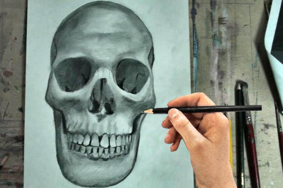 How to Draw a Skull Step by Step. <table style=`width: 644px; height: 608px;` border=`0` align=`left`>  <tbody>  <tr>  <td>&nbsp;  <p>  <object width=`716` height=`447` data=`https://www.youtube.com/v/H-M1AC3iLLQ?fs=1&amp;hl=en_US` type=`application/x-shockwave-flash`>  <param name=`allowFullScreen` value=`true` />  <param name=`allowscriptaccess` value=`always` />  <param name=`src` value=`https://www.youtube.com/v/H-M1AC3iLLQ?fs=1&amp;hl=en_US` />  <param name=`allowfullscreen` value=`true` />  </object>  </p>  <p>  <script type=`text/javascript`><!--  google_ad_client = `pub-6730899040960500`;  /* 728x90, created 5/25/10 */  google_ad_slot = `6501615489`;  google_ad_width = 728;  google_ad_height = 90;  // --></script>  <script src=`https://pagead2.googlesyndication.com/pagead/show_ads.js` type=`text/javascript`></script>  </p>  <p><span dir=`ltr`>Today, you are going to learn how to draw the human skull in front view. Just follow my step my step instructions and pause the video at the end of each step and I promise you that you will surprise yourself. </span></p>  <p>&nbsp;</p>  </td>  </tr>  <tr>  <td>  <p><img src=`https://a3.sphotos.ak.fbcdn.net/hphotos-ak-ash4/293106_2098301069986_1619167147_32011483_1257028_n.jpg` alt=`` width=`720` height=`402` /></p>  <p><span style=`font-size: medium;`>Step 1: Draw a half circle shape, with two tiny half circles on each end. </span></p>  </td>  </tr>  <tr>  <td>  <p><img src=`https://hphotos-sjc1.fbcdn.net/262596_2098301229990_1619167147_32011484_2582219_n.jpg` alt=`` width=`720` height=`360` /></p>  <p><span style=`font-size: medium;`>Step 2: Draw the holes for the eyes and the nose. Notice that the top of the eye shape starts at the bottom of the half circle shape from step one. Also, notice that the nose shape is triangular and it starts 1/3 of the way up the eye shape. </span></p>  </td>  </tr>  <tr>  <td>  <p><img src=`https://a8.sphotos.ak.fbcdn.net/hphotos-ak-ash4/293440_2098301349993_1619167147_32011485_8341076_n.jpg` alt=`` width=`720` height=`365` /></p>  <p><span style=`font-size: medium;`>Step 3: is a tricky step. Add the line that I just added to complete the shape. Notice the perfect symmetry on each side. Notice that the bottom has a squiggly line. </span></p>  </td>  </tr>  <tr>  <td>  <p><img src=`https://a6.sphotos.ak.fbcdn.net/hphotos-ak-ash4/267270_2098301469996_1619167147_32011486_6894253_n.jpg` alt=`` width=`720` height=`371` /></p>  <p><span style=`font-size: medium;`>Step 4: Add the upper teeth. There are 12 upper teeth visible and the largest ones appear to be at the front of the mouth. The mouth curves back in a horseshoe shape and the back teeth are blocked. Be sure to make the teeth smaller as they go further back in the mouth. Also be sure to notice that the teeth in the front are somewhat trapezoidal in shape and widest away from the gum. </span></p>  </td>  </tr>  <tr>  <td>  <p><img src=`https://a4.sphotos.ak.fbcdn.net/hphotos-ak-ash4/293314_2098301549998_1619167147_32011487_1729249_n.jpg` alt=`` width=`720` height=`363` /></p>  <p><span style=`font-size: medium;`>Step 5: Add the bottom row of teeth. Notice that they are slightly smaller than the top teeth. Also, notice that the top row partially overlaps the bottom. Finally, be sure to see that their widest point is also away from the gum. Here is a close up. </span></p>  </td>  </tr>  <tr>  <td>  <p><img src=`https://a3.sphotos.ak.fbcdn.net/hphotos-ak-ash4/293208_2098301630000_1619167147_32011488_2840126_n.jpg` alt=`` width=`720` height=`366` /></p>  <p><span style=`font-size: medium;`>Step 6: Add the jawline. Be sure to notice the shapes that connect the jaw with the rest of the skull. </span></p>  </td>  </tr>  <tr>  <td>  <p><img src=`https://a5.sphotos.ak.fbcdn.net/hphotos-ak-ash4/293097_2098301750003_1619167147_32011489_5527392_n.jpg` alt=`` width=`720` height=`362` /></p>  <p><span style=`font-size: medium;`>Step 7: Add the details on the eye sockets and nose.</span></p>  <p>&nbsp;</p>  </td>  </tr>  <tr>  <td>&nbsp;  <script type=`text/javascript`><!--  google_ad_client = `pub-6730899040960500`;  /* 728x90, created 5/25/10 */  google_ad_slot = `6501615489`;  google_ad_width = 728;  google_ad_height = 90;  // --></script>  <script src=`https://pagead2.googlesyndication.com/pagead/show_ads.js` type=`text/javascript`></script>  </td>  </tr>  <tr>  <td style=`text-align: center;`>&nbsp;<span style=`font-size: x-large;`>Supplies I Use for my Pencil Drawings</span></td>  </tr>  <tr>  <td>  <script type=`text/javascript`><!--  google_ad_client = `pub-6730899040960500`;  /* Across top */  google_ad_slot = `1049141337`;  google_ad_width = 728;  google_ad_height = 15;  // --></script>  <script src=`https://pagead2.googlesyndication.com/pagead/show_ads.js` type=`text/javascript`></script>  <p style=`TEXT-ALIGN: left`>&nbsp;</p>  <form action=`https://www.jdoqocy.com/interactive` enctype=`application/x-www-form-urlencoded` method=`get`>  <table style=`width: 600px;` border=`0` cellspacing=`0` cellpadding=`5`>  <tbody>  <tr>  <td width=`10%` valign=`top`>`&gt;<img src=`https://www.dick-blick.com/items/222/06/22206-0159-2ww-m.jpg` border=`0` alt=`15-Piece Drawing Set` /></td>  <td valign=`top`>  <p><strong><span style=`font-size: medium;`>15-Piece Drawing Set</span></strong></p>  <p><span style=`font-size: x-small;`><strong>Merrill`s Opinion:</strong> Faber-Castell makes the&nbsp;best drawing pencils. These pencils&nbsp;are mixed with graphite and clay and&nbsp;enhance an artists ability to create and layer dark tones.&nbsp;You will see me use this set in almost all of my videos.&nbsp; </span></p>  <hr />  <input name=`pid` type=`hidden` value=`3724826` /> <input name=`aid` type=`hidden` value=`10495307` /> <input name=`cjsku` type=`hidden` value=`22206-0159` /> <input name=`url` type=`hidden` value=`https://www.dickblick.com/products/faber-castell-9000-pencils/?wmcp=cj&amp;wmcid=feeds&amp;wmckw=22206-0159-8888` /> <input type=`submit` value=`Buy` /></td>  </tr>  </tbody>  </table>  </form>  <p><img src=`https://www.awltovhc.com/image-3724826-10495307` border=`0` alt=`` width=`1` height=`1` /></p>  <form action=`https://www.anrdoezrs.net/interactive` enctype=`application/x-www-form-urlencoded` method=`get`>  <table style=`width: 600px;` border=`0` cellspacing=`0` cellpadding=`5`>  <tbody>  <tr>  <td width=`10%` valign=`top`><img src=`https://www.dick-blick.com/items/204/43/20443-2061-1-2ww-m.jpg` border=`0` alt=`Lyra Graphite Crayons` /></td>  <td valign=`top`>  <p><strong><span style=`font-size: medium;`>Lyra Graphite Crayons</span></strong></p>  <p><span style=`font-size: x-small;`><strong>Merrill`s Opinion:</strong> Do you ever get TIRED of shading with a fine `tip` pencil? Get my `point`? This tool will save you time and money.</span></p>  <p><span style=`font-size: x-small;`>Click `MORE` to see me use this product in a video-</span></p>  <hr />  <input name=`pid` type=`hidden` value=`3724826` /> <input name=`aid` type=`hidden` value=`10495307` /> <input name=`cjsku` type=`hidden` value=`20443-2091` /> <input name=`sid` type=`hidden` value=`2858963` /> <input name=`url` type=`hidden` value=`https://www.dickblick.com/products/lyra-graphite-crayons/?wmcp=cj&amp;wmcid=feeds&amp;wmckw=20443-2091` /> <input type=`submit` value=`Buy` /></td>  </tr>  </tbody>  </table>  </form>  <p><img src=`https://www.ftjcfx.com/image-3724826-10495307` border=`0` alt=`` width=`1` height=`1` /></p>  <form action=`https://www.tkqlhce.com/interactive` enctype=`application/x-www-form-urlencoded` method=`get`>  <table style=`width: 600px;` border=`0` cellspacing=`0` cellpadding=`5`>  <tbody>  <tr>  <td width=`10%` valign=`top`><img src=`https://www.dick-blick.com/items/050/80/05080-9002-2-2ww-m.jpg` border=`0` alt=`Robert Simmons White Sable Brushes` /></td>  <td valign=`top`>  <p><strong><span style=`font-size: medium;`>Robert Simmons White Sable Brushes</span></strong></p>  <p><span style=`font-size: x-small;`><strong>Merrill`s Opinion</strong>: Robert Simmons brushes get better with age. These synthetic brushes collect particles of graphite as they are rubbed on a piece of paper. This enables me to&nbsp;softly move and blend tones. Most often I use the `Flat Size 10` brush but it helps to have a variety of sizes and shapes.&nbsp;</span></p>  <hr />  <input name=`pid` type=`hidden` value=`3724826` /> <input name=`aid` type=`hidden` value=`10495307` /> <input name=`cjsku` type=`hidden` value=`05824-1010` /> <input name=`sid` type=`hidden` value=`2858963` /> <input name=`url` type=`hidden` value=`https://www.dickblick.com/products/robert-simmons-white-sable-brushes/?wmcp=cj&amp;wmcid=feeds&amp;wmckw=05824-1010` /> <input type=`submit` value=`Buy` />  <p>&nbsp;</p>  </td>  </tr>  </tbody>  </table>  </form>  <p><img src=`https://www.awltovhc.com/image-3724826-10495307` border=`0` alt=`` width=`1` height=`1` /></p>  <form action=`https://www.kqzyfj.com/interactive` enctype=`application/x-www-form-urlencoded` method=`get`>  <table style=`width: 600px;` border=`0` cellspacing=`0` cellpadding=`5`>  <tbody>  <tr>  <td width=`10%` valign=`top`><img src=`https://www.dick-blick.com/items/228/66/22866-1059-2ww-m.jpg` border=`0` alt=`Loew-Cornell Blending Stumps` /></td>  <td valign=`top`>  <p><strong><span style=`font-size: medium;`>Loew-Cornell Blending Stumps</span></strong></p>  <p><span style=`font-size: x-small;`><strong>Merrill`s Opinion</strong>- INVALUBLE tools for blending! These will cost you LESS than a trip on&nbsp;the subway (Less than 2 dollars) and enhance your shading capacity substantially! I like Leow-Cornell because the&nbsp;stump is more compact and&nbsp;the tips do not wear as easily as other brands.&nbsp;I use these tools in almost every one of my videos.</span></p>  <hr />  <input name=`pid` type=`hidden` value=`3724826` /> <input name=`aid` type=`hidden` value=`10495307` /> <input name=`cjsku` type=`hidden` value=`22866-4014` /> <input name=`sid` type=`hidden` value=`2858963` /> <input name=`url` type=`hidden` value=`https://www.dickblick.com/products/loew-cornell-blending-stumps/?wmcp=cj&amp;wmcid=feeds&amp;wmckw=22866-4014` /> <input type=`submit` value=`Buy` /></td>  </tr>  </tbody>  </table>  </form>  <p><img src=`https://www.awltovhc.com/image-3724826-10495307` border=`0` alt=`` width=`1` height=`1` /></p>  <form action=`https://www.tkqlhce.com/interactive` enctype=`application/x-www-form-urlencoded` method=`get`>  <table style=`width: 600px;` border=`0` cellspacing=`0` cellpadding=`5`>  <tbody>  <tr>  <td width=`10%` valign=`top`><img src=`https://www.dick-blick.com/items/102/09/10209-OC3-m.jpg` border=`0` alt=`Blick White Sulphite Drawing Paper` /></td>  <td valign=`top`>  <p><strong><span style=`font-size: medium;`>Blick White Sulphite Drawing Paper</span></strong></p>  <p><span style=`font-size: x-small;`><strong>Merrill`s Opinion</strong>: Really, I DARE YOU, try to find a better value than this one! 500 sheets of 80LB (thick) drawing paper for $11.50. AMAZING DEAL!......If you use computer paper to create your drawings, you are ROBBING yourself from seeing what you can really do! This paper has more `tooth` (texture on the surface) than computer paper and your ability to shade will be enhanced. </span></p>  <hr />  <input name=`pid` type=`hidden` value=`3724826` /> <input name=`aid` type=`hidden` value=`10495307` /> <input name=`cjsku` type=`hidden` value=`10209-1033` /> <input name=`sid` type=`hidden` value=`2858963` /> <input name=`url` type=`hidden` value=`https://www.dickblick.com/products/blick-white-sulphite-drawing-paper/?wmcp=cj&amp;wmcid=feeds&amp;wmckw=10209-1033` /> <input type=`submit` value=`Buy` /></td>  </tr>  </tbody>  </table>  </form>  <p><img src=`https://www.ftjcfx.com/image-3724826-10495307` border=`0` alt=`` width=`1` height=`1` /></p>  <p>Shading References</p>  </td>  </tr>  <tr>  <td><img src=`https://a2.sphotos.ak.fbcdn.net/hphotos-ak-snc6/267338_2098301910007_1619167147_32011490_4103343_n.jpg` alt=`` width=`720` height=`407` /></td>  </tr>  <tr>  <td><img src=`https://a8.sphotos.ak.fbcdn.net/hphotos-ak-ash4/295075_2098301950008_1619167147_32011491_7866471_n.jpg` alt=`` width=`720` height=`407` /></td>  </tr>  <tr>  <td><img src=`https://a6.sphotos.ak.fbcdn.net/hphotos-ak-ash4/292650_2098302150013_1619167147_32011492_8307882_n.jpg` alt=`` width=`720` height=`410` /></td>  </tr>  <tr>  <td><img src=`https://hphotos-sjc1.fbcdn.net/251437_2098302230015_1619167147_32011493_2890354_n.jpg` alt=`` width=`720` height=`412` /></td>  </tr>  <tr>  <td><img src=`https://a1.sphotos.ak.fbcdn.net/hphotos-ak-snc6/223663_2098302310017_1619167147_32011494_7825077_n.jpg` alt=`` width=`720` height=`410` /></td>  </tr>  <tr>  <td><img src=`https://a7.sphotos.ak.fbcdn.net/hphotos-ak-snc6/262514_2098302510022_1619167147_32011495_3115513_n.` alt=`` width=`720` height=`460` /></td>  </tr>  </tbody>  </table>  <p>  <script type=`text/javascript`><!--  google_ad_client = `pub-6730899040960500`;  /* 728x90, created 5/25/10 */  google_ad_slot = `6501615489`;  google_ad_width = 728;  google_ad_height = 90;  // --></script>  <script src=`https://pagead2.googlesyndication.com/pagead/show_ads.js` type=`text/javascript`></script>  </p>