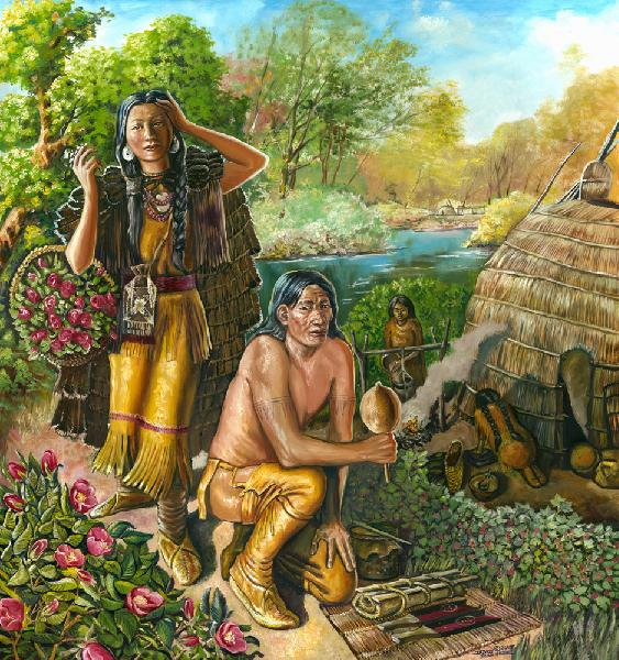 A Rose Harvest. The year is 1685 and this Shinnecock brother and sister are pausing on their trip to the ceremonial grounds. The sister is collecting roses while her brother practices some of the ceremonial songs that are always sung during the rituals which are similar to the Delaware Bighouse Ceremonies. Here he is shown with a gourd rattle and on the ground is a small water-drum and a rolled hide drum with sticks. The women below begin the food preparations for the feast which always accompanies a public event within Native American culture.