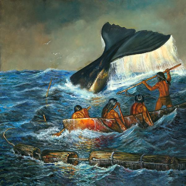 Powdawe -Shinnecock Whale Hunt of the 17 Century. The Powdawe or whale hunt of the Shinnecock/Montauk people of eastern Long Island was an ancient ritual in which drift whales were captured with the mashue or dug-out canoes. The whale or potedaup in the Montauk language,was considered a great spiritual gift from the Creator or the Giant whose name was Moshup. Later this form of whaling was called `off-shore` whaling and the Shinnecock - Montauk people of eastern Long Island taught the early English settlers this means of activity. Pictured whalers in the mashue and wooden flotation devises which would have been attached to the wounded whale. Eastern Long Island Native Americans practiced this Powdawe. (The original of this painting is an oil on masonite panel mounted on a 1x2 pine strip temporary hanging frame. Price is $4700 plus shipping. For more informaton contact the artist.)