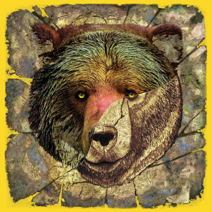 Portrait of a Brown Bear-color 3. Available in museum quality canvas or fine art paper. Pricing upon request.