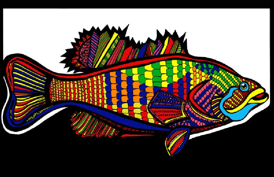 Large Mouth Bass (Fish 1 - color 1). Place this wonderful design in a special place in your home or office. Available in fine art paper or museum quality canvas. Can be purchased in a set for a wall hanging arrangement..