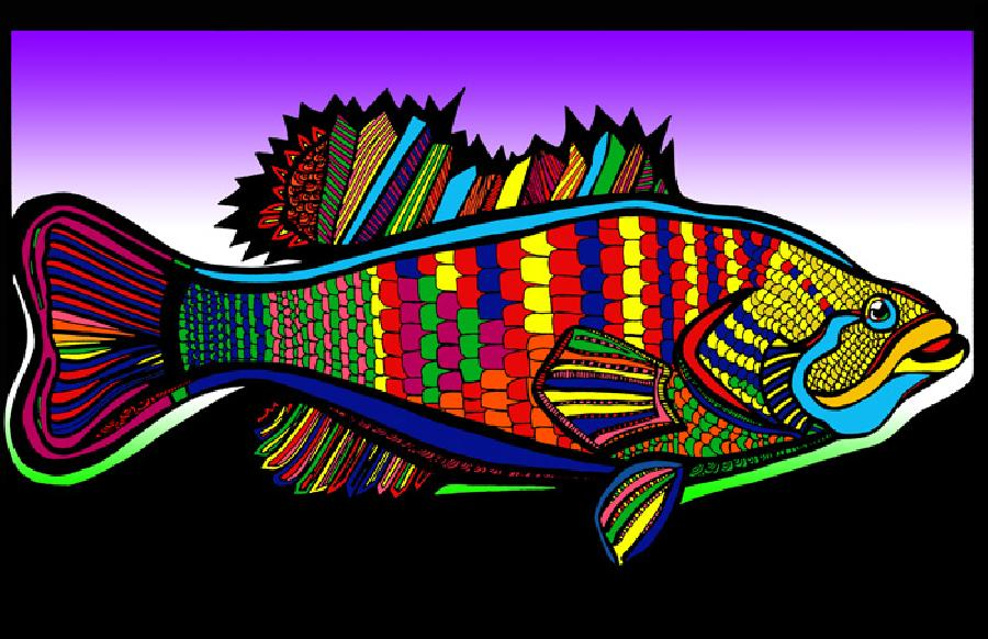Large Mouth Bass (Fish 1 - color 3). Choose museum quality canvas or fine art paper. Pricing upon request. 11 x 17