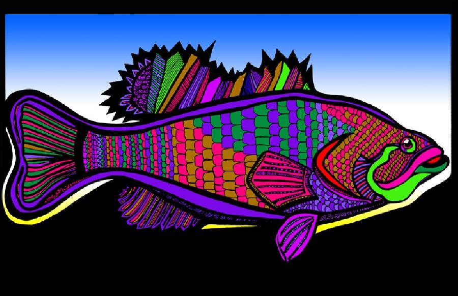 Large Mouth Bass (Fish 1 - color 5). Available in fine art paper and museum quality canvas. Pricing upon request. 11 x 17