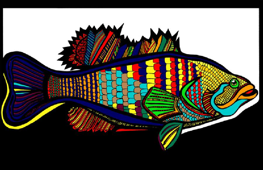 Large Mouth Bass (Fish 1 - color 4). Available in fine art paper and museum quality canvas. Will never fade. Pricing upon request. 11 x 17