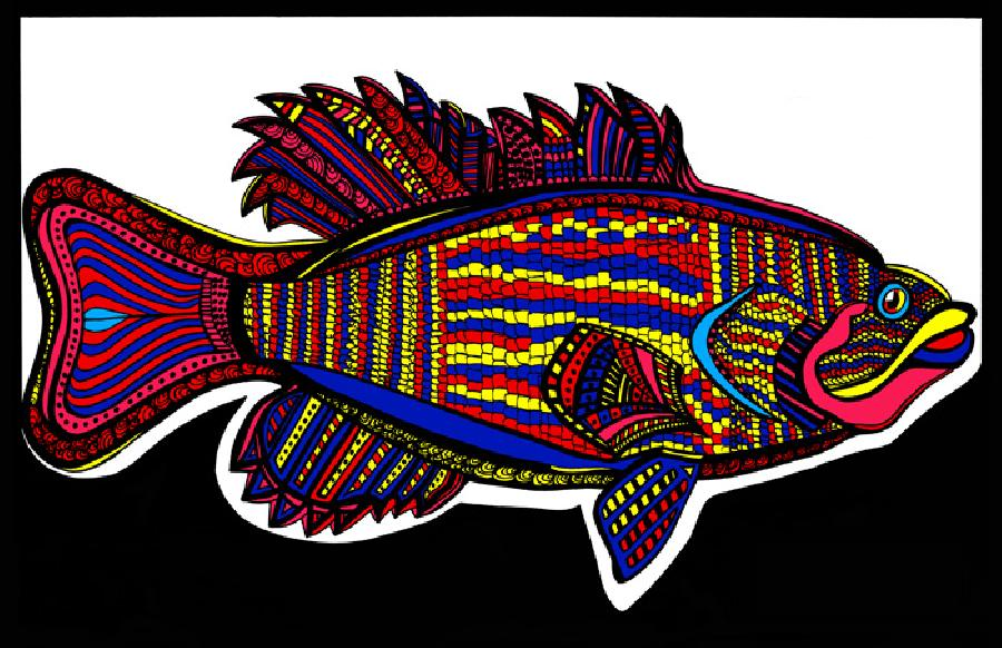 Small Mouth Bass (Fish 3 - color 2). Quality fine art paper and museum quality canvas availavle. Pricing upon request. 11 x 17