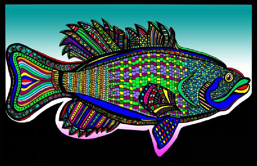 Small Mouth Bass (Fish 3 - color 4). Available in fine art paper and museum quality canvas. Pricing upon request. 11 x 17