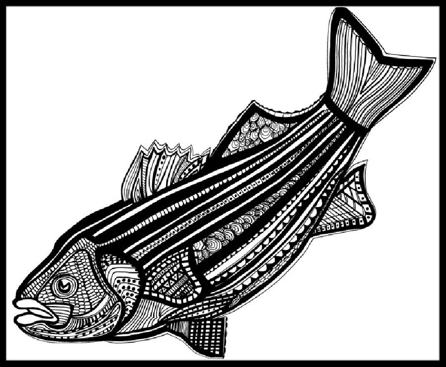Striped Bass (Fish9) Blk & White. Pricing upon request. 16 x 20 inchws. canvas or museum quality gallery wrapped canvas.