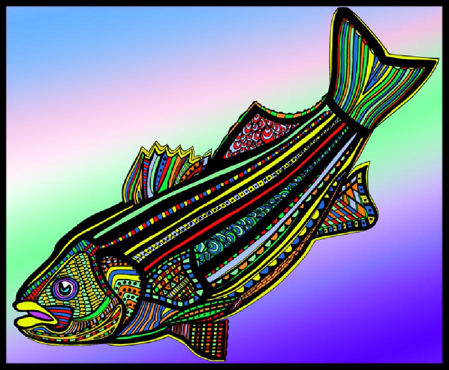 Striped Bass (Fish9-color 1). Select from fine art paper or museum quality canvas. Also available in black and white. Pricing upon request. 16 x 20 inches.