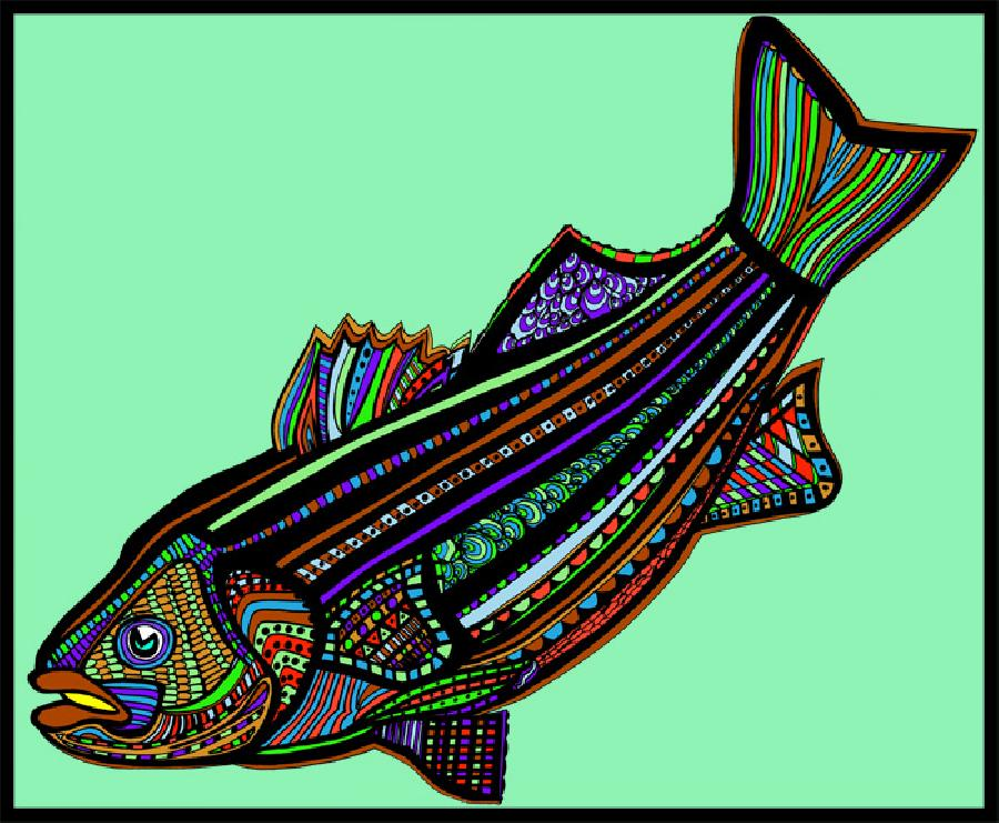 Striped Bass (Fish9- Color5). Great coloration for the striped bass with a solid background. Pricing upon request. 16 x 20 inches.