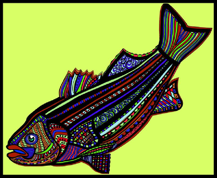Striped Bass (Fish9- Color7). A striped bass in a new coloration with a solid background. Available in fine art paper or museum quality canvas. Pricing upon request. 16 x 20 inches