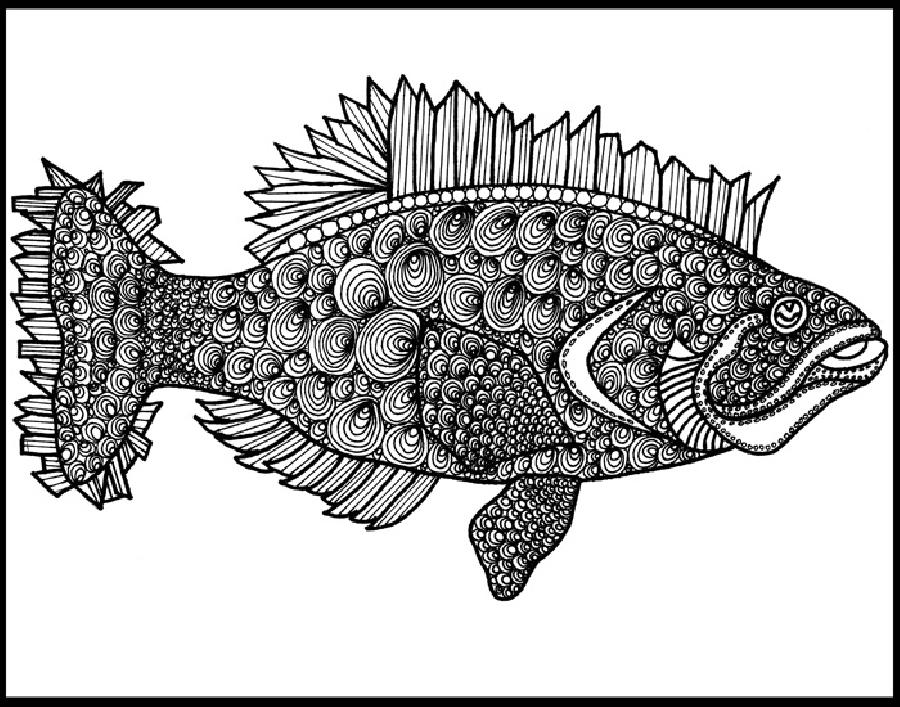 Fluke (KFish3). A very detailed version of a black and white design. Select two from this attractive set of three. Select all three to be framed together. Great collection. Available in fine art paper and museum quality canvas.