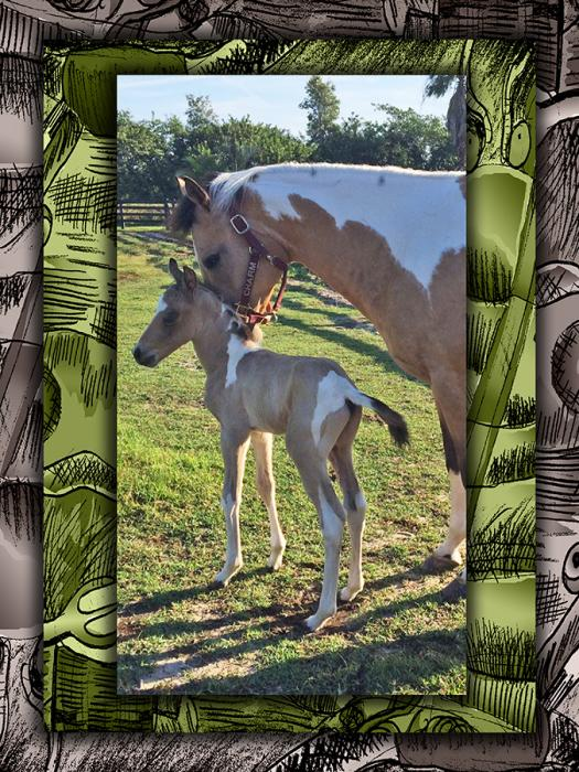Mother-baby-horse-2.