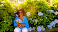 hydrangeas and me