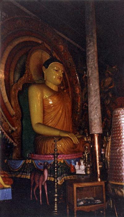 Buddha In Colombo.