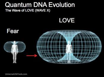 Quantum dna - heart torus