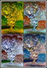 Printed Four Seasons