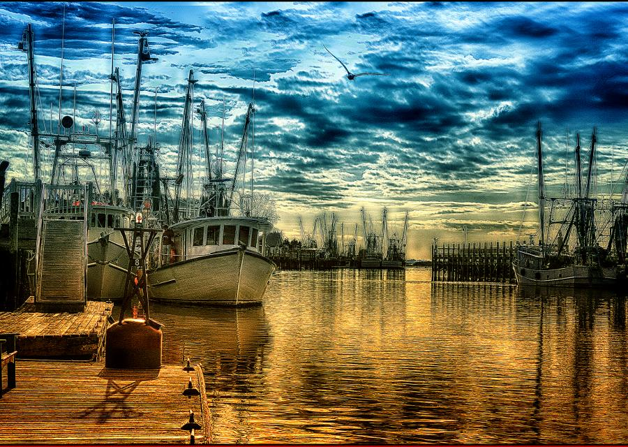 20x14.22 350 Ppi Shem Creek. Priced unmated and unframed scanned, hand colored digitally limited edition of 50 size price unmated unframed. All images are Limited editions on and are Giclee Print. A certificate is supplied with each sold giclee print, that provides information about Copyright ownership, print title, size, media, number in the limited edition, edition size, release date, printer name, etc. The certificate gives you a guaranty of museum quality standards and fine art value.