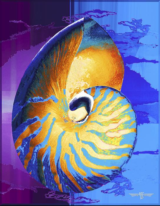 Nautilus. Priced unmated and unframed scanned, hand colored digitally limited edition of 50 size price unmated unframed. All images are Limited editions on and are Giclee Print. A certificate is supplied with each sold giclee print, that provides information about Copyright ownership, print title, size, media, number in the limited edition, edition size, release date, printer name, etc. The certificate gives you a guaranty of museum quality standards and fine art value.