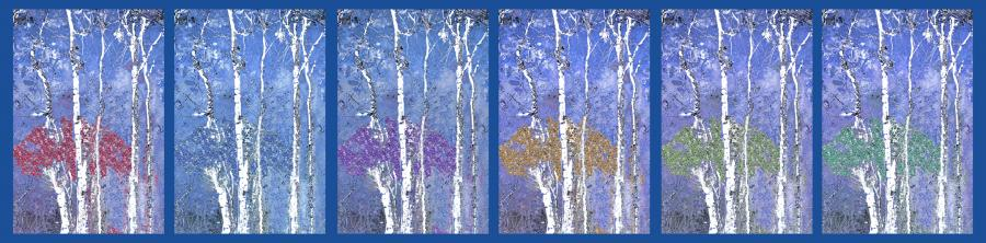 Reflections Blue. Priced unmated and unframed scanned, hand colored digitally limited edition of 10 per size price unmated unframed. All images are Limited editions on and are Giclee Print. A certificate is supplied with each sold giclee print, that provides information about Copyright ownership, print title, size, media, number in the limited edition, edition size, release date, printer name, etc. The certificate gives you a guaranty of museum quality standards and fine art value.<br />