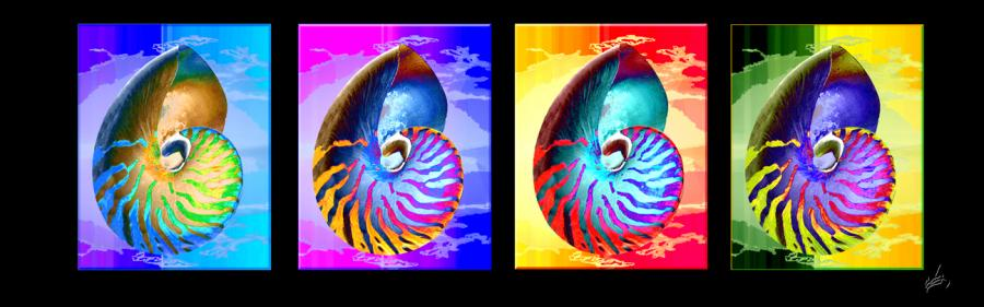 nautilus. Hand Drawn scanned, hand colored digitally <br />scanned, hand colored digitally <br />Priced unmated and unframed scanned, hand colored digitally limited edition of 10 per size price unmated unframed. All images are Limited editions on and are Giclee Print. A certificate is supplied with each sold giclee print, that provides information about Copyright ownership, print title, size, media, number in the limited edition, edition size, release date, printer name, etc. The certificate gives you a guaranty of museum quality standards and fine art value.<br />