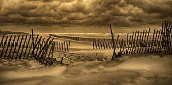 Beach 1aa - H. Scott Cushing