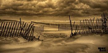 Beach sepia toned - H. Scott Cushing