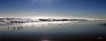 Beach Afternoon - H. Scott Cushing