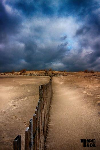 stormy day 6 - H. Scott Cushing