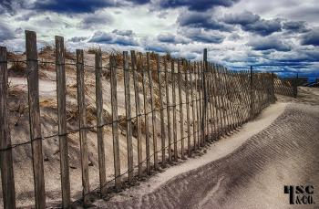 snow fences 76 - H. Scott Cushing