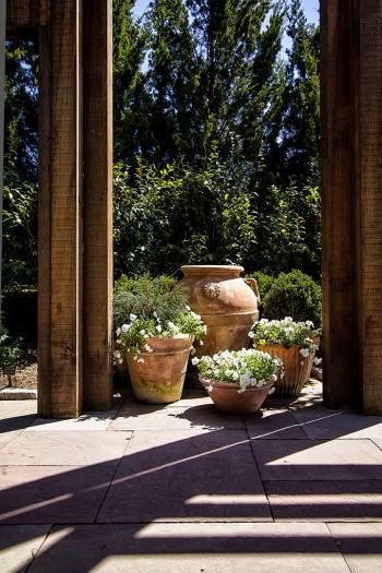 Garden 6 - H. Scott Cushing