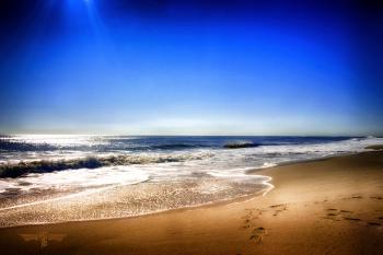 Great Day - H. Scott Cushing