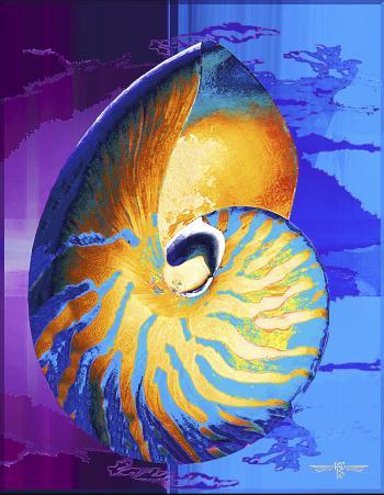 Nautilus - H. Scott Cushing