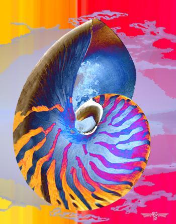 Nautilus 5 - H. Scott Cushing