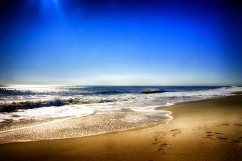 beach 67 - H. Scott Cushing