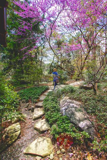 Path2 - H. Scott Cushing