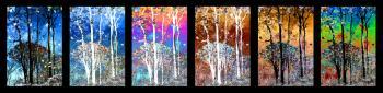 Reflections72 - H. Scott Cushing