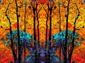 Wood Nymph 1 - H. Scott Cushing