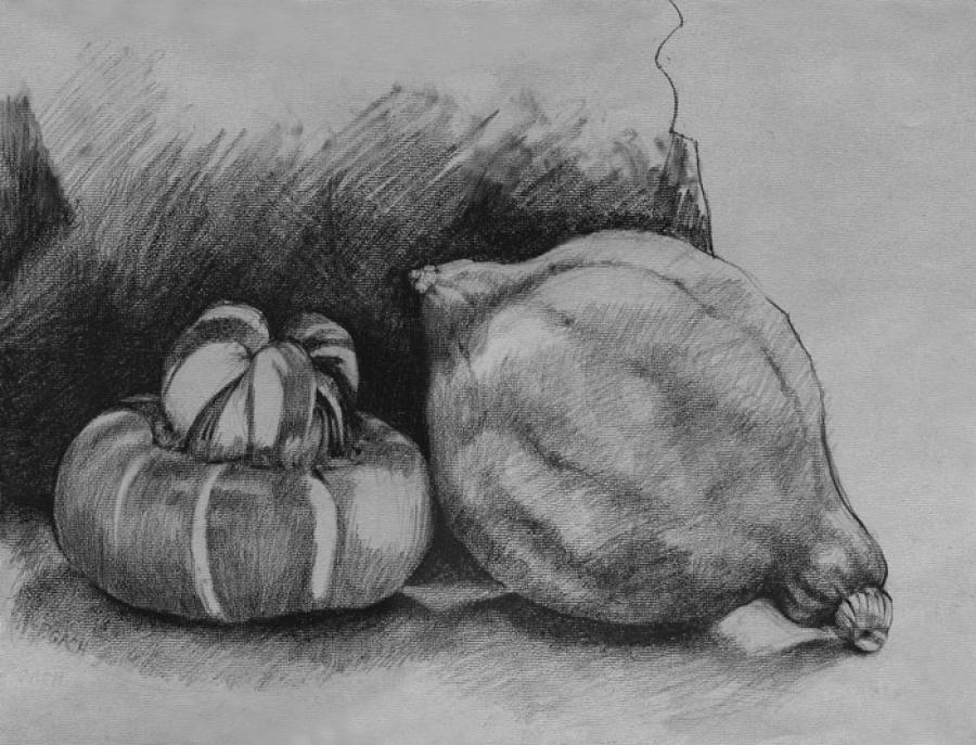Gourds. Charcoal Pencil 20` x 16`