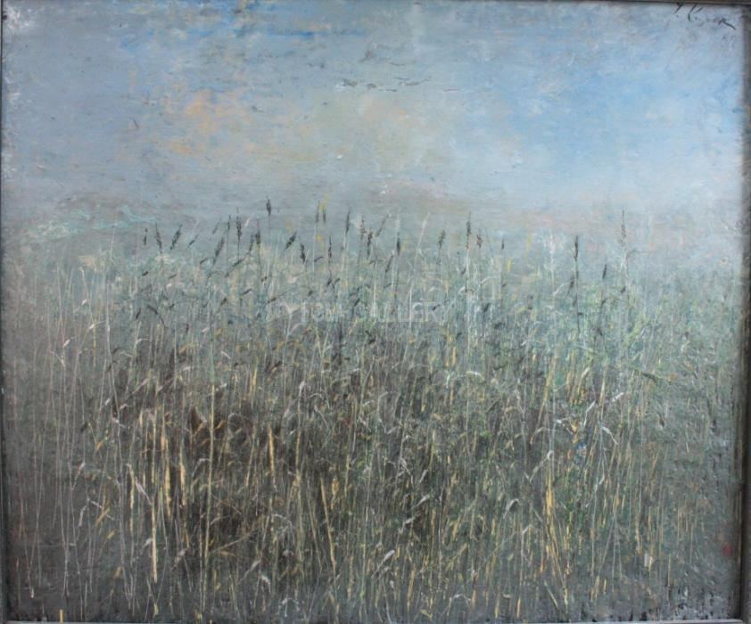 Grass, 2005. <h3><span style=`font-family: times new roman,times; font-size: medium;`>Mixed media, oil on canvas, 18`x22`(46X56 cm)</span></h3>
