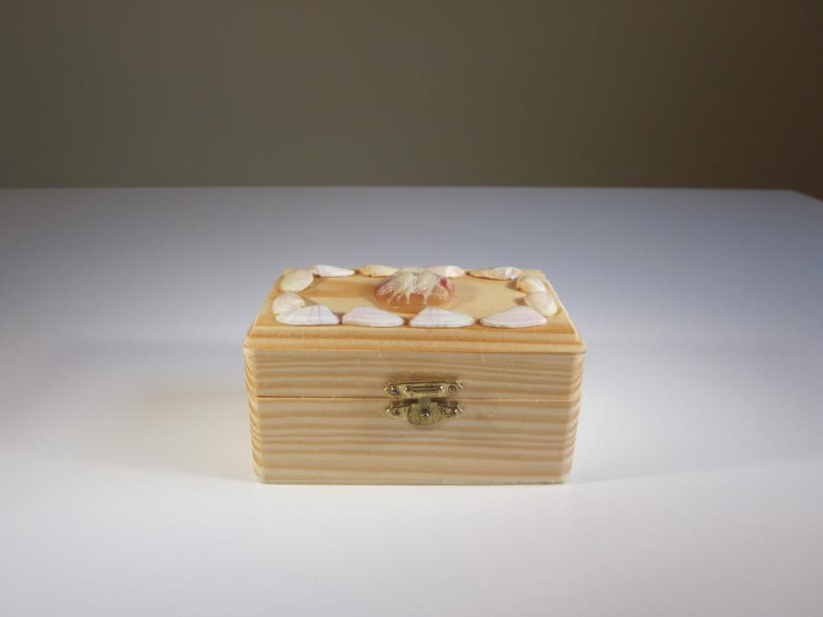 Pine Wood & Seashell Dream Box. Handcrafted pine, resin cameo and natural shell box, rectangular shape 4-1/2`W x 2-3/4`D x 2-1/2`H, hinged top with brass latch, exterior clear polyurethane finish, unfinished natural wood interior.<br /><br />Ideal for storing small jewelry.<br /><br />A Dream Box is meant to serve as <br />a physical reminder<br />that dreams will come true <br />if you search deep within your heart.<br /><br />Write your dream on a piece of paper. <br />Fold the paper and place it in <br />the Dream Box.<br /><br />May your days be filled with rainbows <br />and your nights with stars.<br />