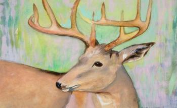 As the Deer Panteth - Kathleen Izzo