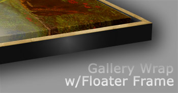 Gallery Wrap w/Floater Frame