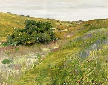 Landscape, Shinnecock Hills - William Merritt Chase