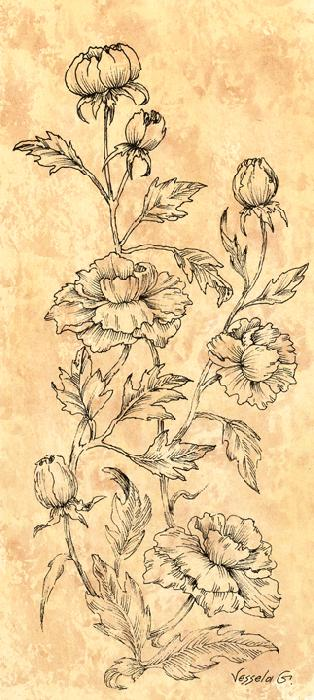 Wild Flowers I - Vessela