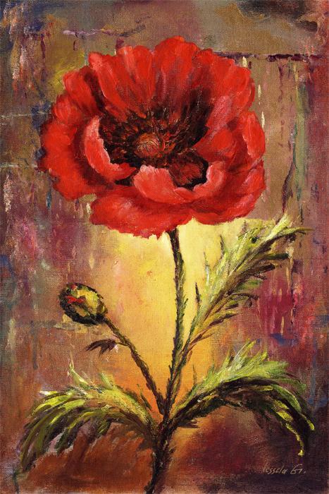 Poppy A - Vessela