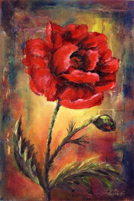 Poppy B - Vessela